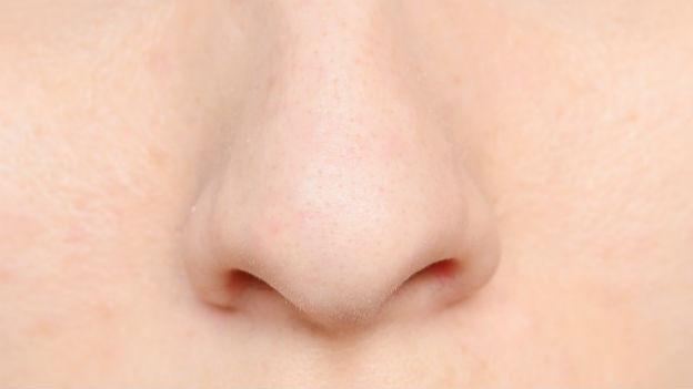 Nase von vorne