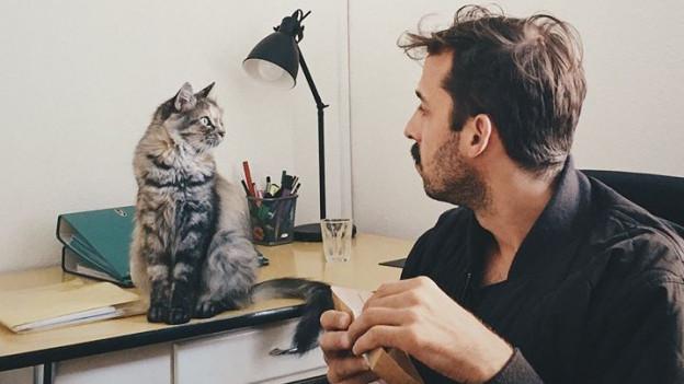 Schau mir in die Augen, Katze.