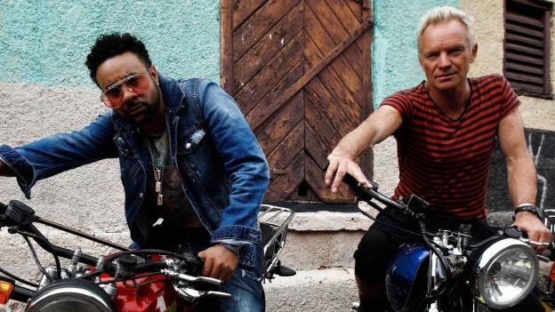 Shaggy und Sting