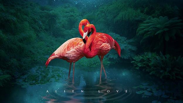 "Fùgù Mango ""Alien Love"" (2017)"
