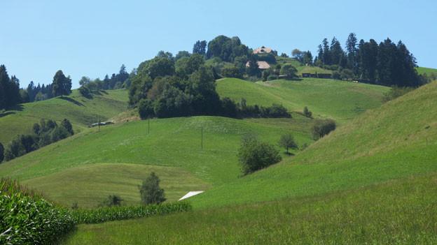 So leicht, als wollten sie davonfliegen: Die Hügel im Emmental.