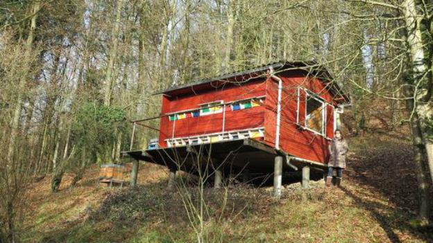 Ein rotes Bienenhaus im Wald.