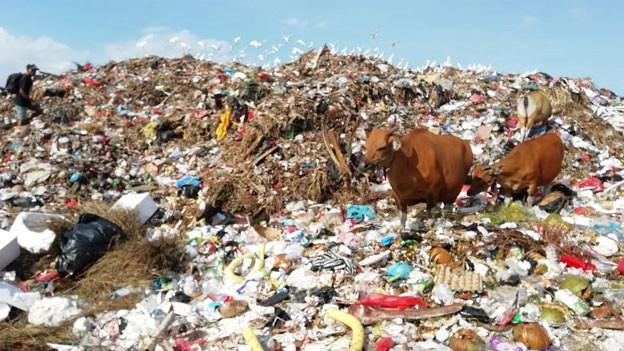An den Stränden türmen sich tonnenweise Abfall. Der schnell wachsende Tourismus hat auf der Insel längst seine schmutzigen Spuren hinterlassen. Doch das Problem ist auch hausgemacht.