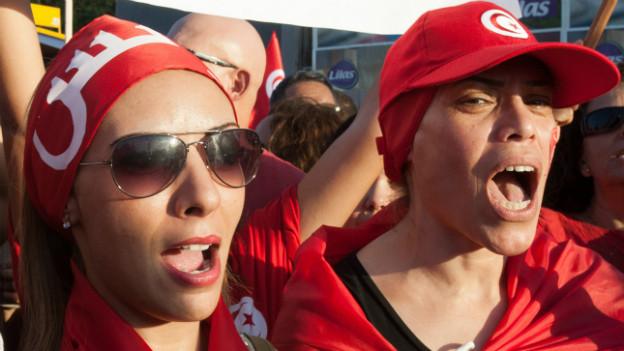 Proteste gegen die Ennahda in Tunis im August 2013.