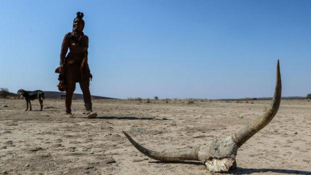 Dürre in Namibia