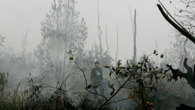 Ein Mann beobachtet Feuer im Regenwald auf Borneo