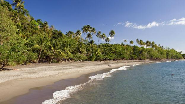 Strand auf Martinique.