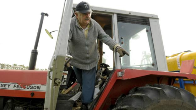 Präsident auf dem Traktor - Pepe Mujica in seinem Garten.