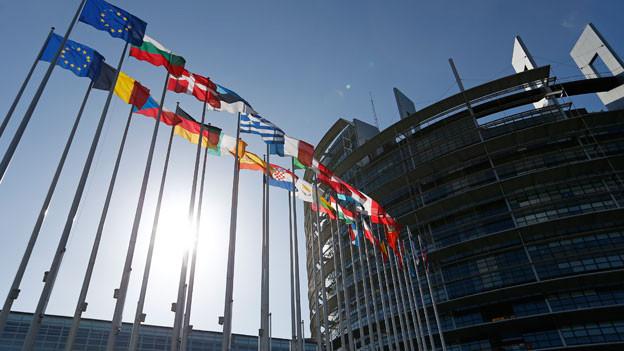 Flaggen der EU-Mitgliedsstaaten vor dem Gebäude des Europäischen Parlaments in Strassburg, 15. April 2014.