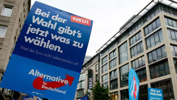 Parteianhänger schwenken eine Fahne der AfD, der Partei «Alternative für Deutschland».