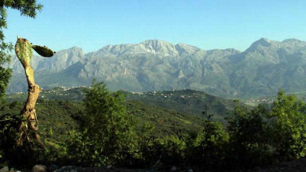 Im Hintergrund zu sehen: Das Bergmassiv von Djura-Djura in Algerien.