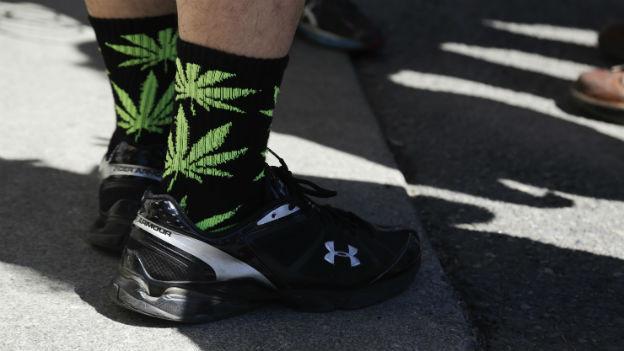 Das Bild zeigt die Füsse eines Mannes mit Turnschuhen - auf den schwarzen Socken sind grüne Hanfblätter sichtbar.