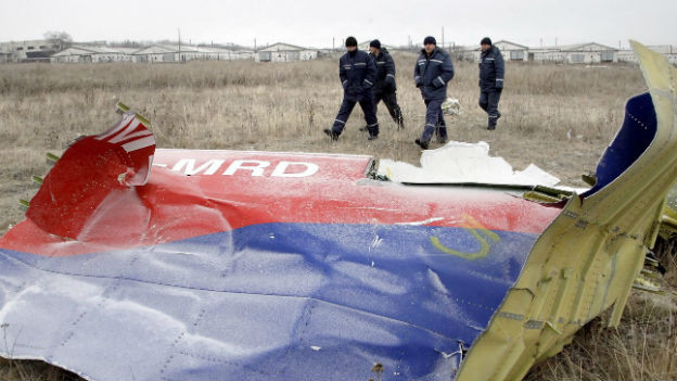 Das Bild zeigt ein rot-blaues Wrackteil des Flugzeugs auf einer Wiese, dahinter mehrere Polizisten.