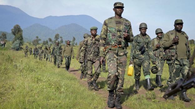 Soldaten der kongolesischen Armee durchschreiten ein Feld.