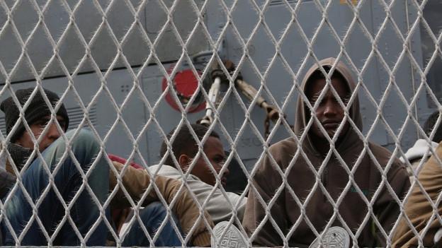 Hinter einem grauen Gitter sind