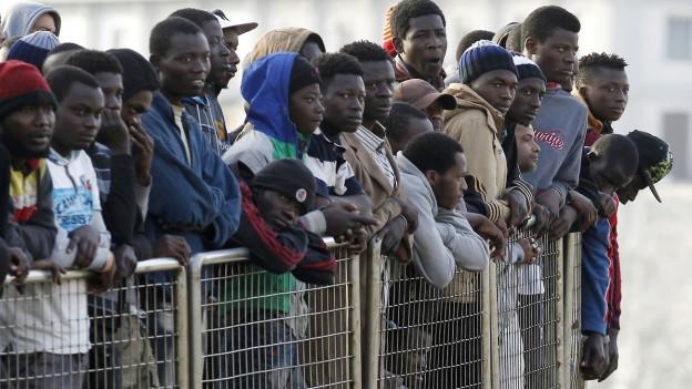 Aufnahme von in Italien gestrandeten Bootsflüchtlingen in einem italienischen Hafen.