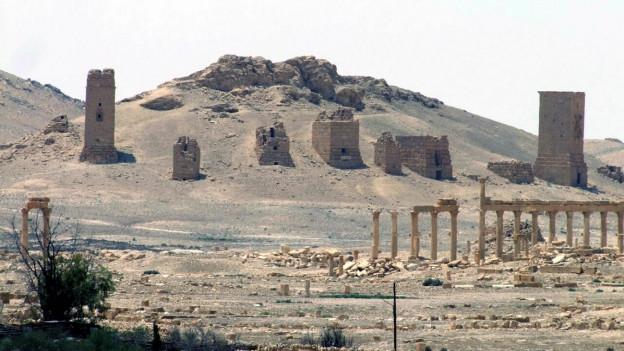 Blick auf rümische Ruinen in der Oasenstadt Palmyra.
