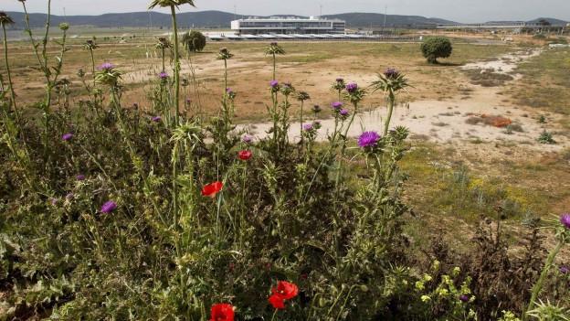 Im Hintergrund: Der Geisterflughafen von Ciudad Real.