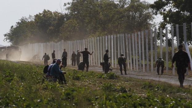Soldaten schleppen Maschendrahtzaun über einen Feldweg.