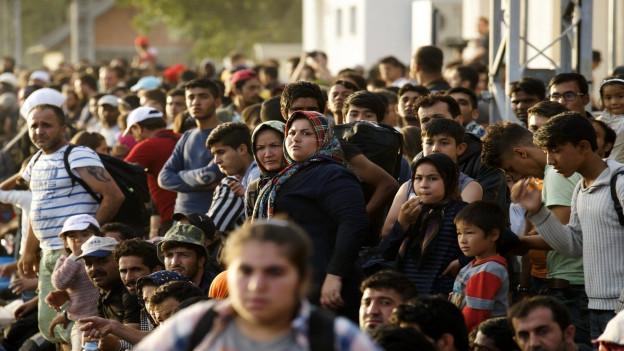 Eine grosse Menge von Flüchtlingen in Kroatien wartet am Bahnsteig auf einen Zug Richtung Westen.