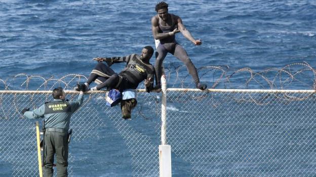Zwei Migranten versuchen in der spanischen Enklave Ceuta den Grenzzaun zu überwinden