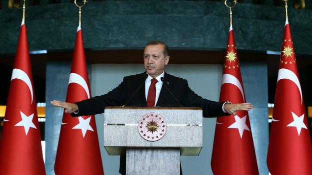 Der türkische Präsident Recep Tayyip Erdogan spricht im Januar in der türkischen Botschaft in Ankara. Das nach einem Anschlag in einem historischen Viertel von Istanbul.