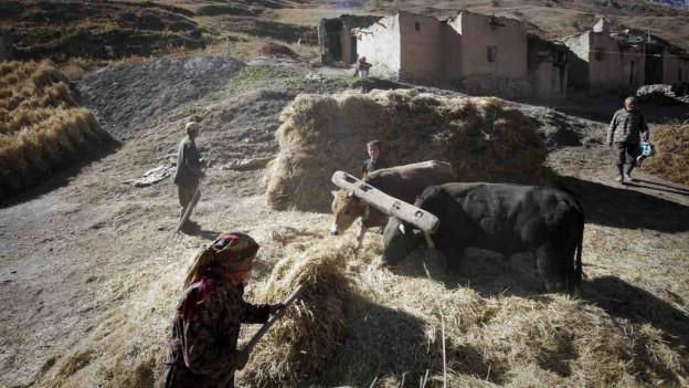 Blick auf ein sehr ärmliches Dorf im Hochgebirge Tadschikistans