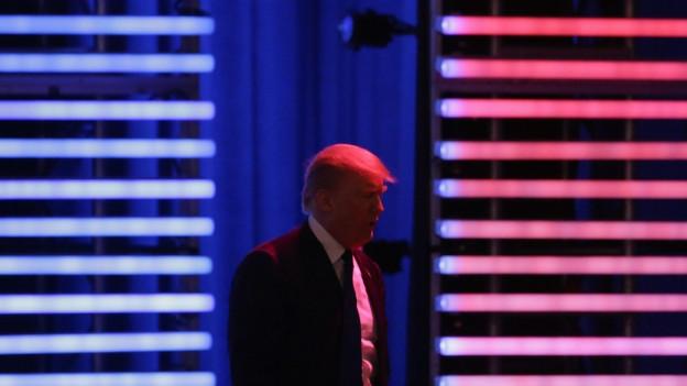 Donald Trump vor einer Lichterwand in den amerikanischen Farben.