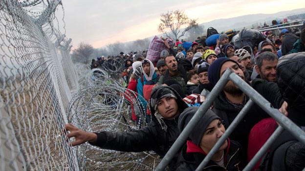 Flüchtlinge hinter einem Stacheldraht, welcher die griechische Seite von der mazedonischen trennt.