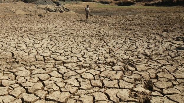 Ein ausgetrockneter Teich im Westen Indiens.