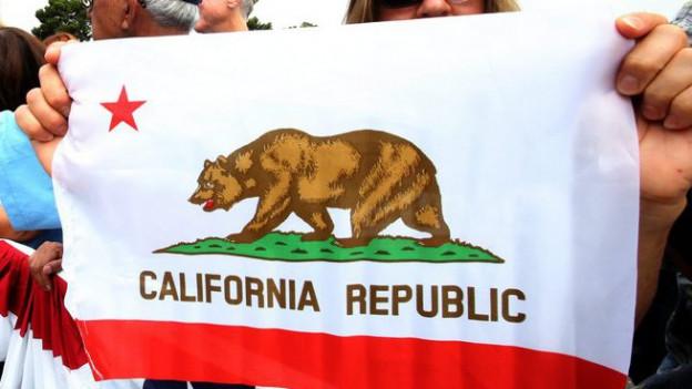 Eine Frau hält eine kalifornische Flagge hoch.