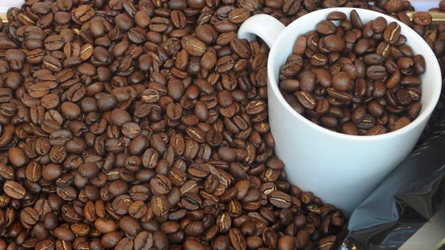 Kaffee – doch nicht krebserregend?