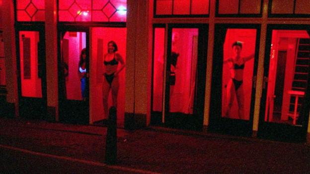 Frauen stehen in rot erleuchteten Schaufenstern und bieten ihre sexuellen Dienste an.