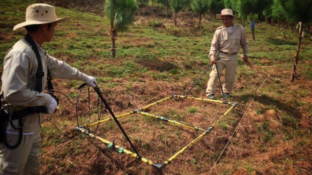 Zwei Entminer auf einem Feld in Laos bei der Arbeit, in der Hand halten sie einen Metalldetektor.