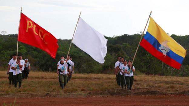Farc-Rebellen gehen auf einem Feld und tragen Fahnen.