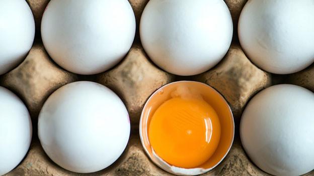 Millionen verseuchte Eier wurden in den Niederlanden zurückgerufen. Das Gift mit Namen Fipronil ist für den Menschen, insbesondere für Kinder, je nach Konzentration gesundheitsschädlich.