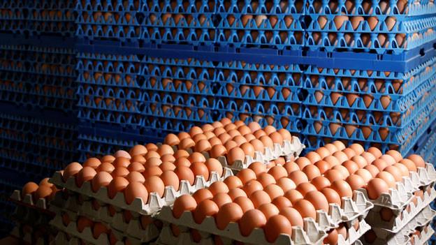 Im Skandal um mit Fipronil belastete Eier will die EU eine Krisensitzung einberufen.