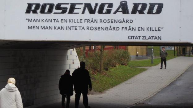 Auf dem Bild blicken wir ins Quartier Rosengård in Malmö, wo auch Fussballstar Zlatan Ibrahimovic aufgewachsen ist und seine Spuren hinterlässt.