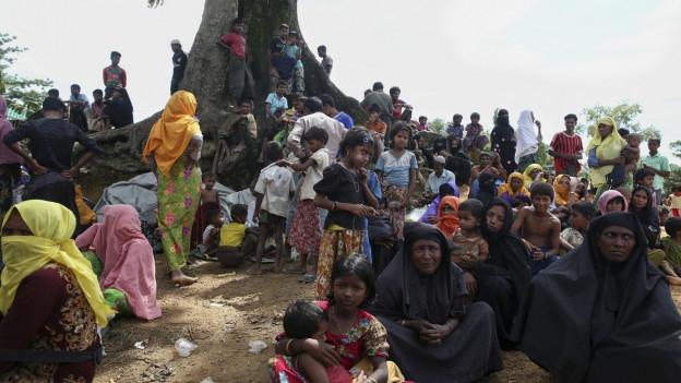 Menschen sitzen vor einem Baum und warten, dass sie ins Flüchtlingslager in Bangladesch dürfen.