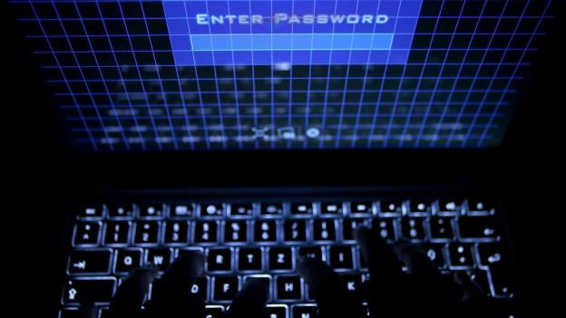 Auf dem Bild zu sehen, ist eine unbekannte Person, die auf einer Webseite ein Passwort eingibt.