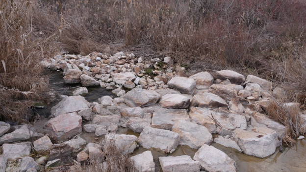 Ein steiniges Flussbett mit einer Pfütze Wasser.