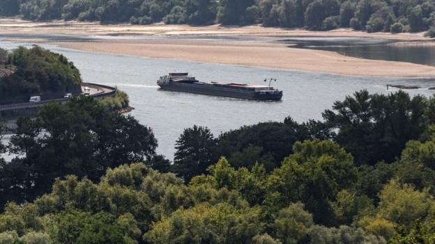 Zu sehen ist der Rhein bei Bacharach in Rheinland-Pfalz: Wegen der anhaltenden Trockenheit wird die Fahrrinne für die Schifffahrt immer enger.