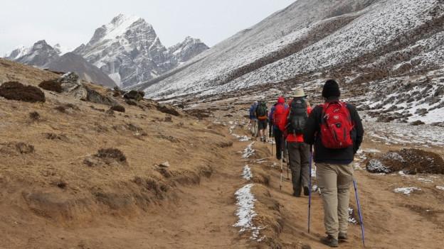 Reiseveranstalter sollen Himalaya-Touristen absichtlich krank gemacht haben.