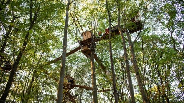 Eine Baumhütte in den Bäumen im Hambacher Forst.