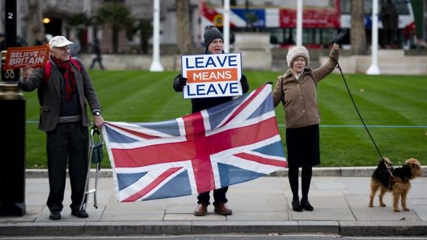 Pro-Brexit Demonstranten.