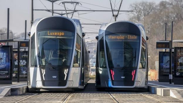 Zwei Trams im Zentrum von Luxemburg, frontal fotografiert.