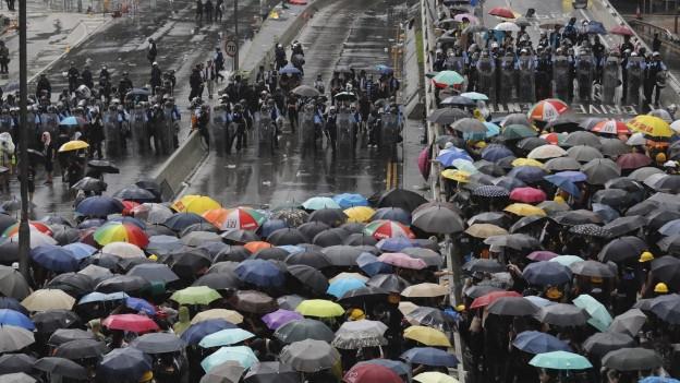 Hongkonger mit Regenschirmen stehen der Polizei gegenüber.