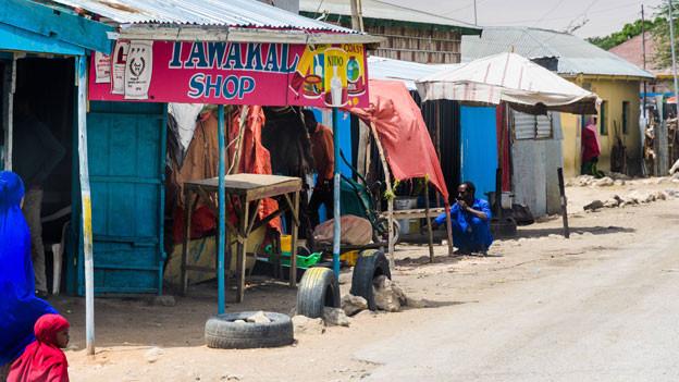 Umweltverschmutzung, Dürre und Trockenheit: Somaliland hat besonders unter den Folgen des Klimawandels zu leiden. Um diese zu bewältigen, sind die Menschen hier auf internationale Hilfe angewiesen. Doch US-Präsident Trump droht, die Entwicklungshilfegelder zu kürzen oder ganz streichen. Und zwar für ganz Somalia.