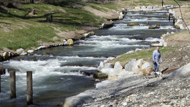 Gewässerproben aus 6 Schweizer Mittellandbächen wurden speziell aufbereitet, gekühlt und mit modernsten Messgeräten analysiert.