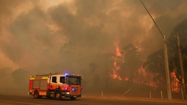 Zu sehen ist ein Feuerwehrauto, das neben einem brennenden Wald auf einer Strasse fährt.